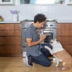 Comment arrêter l'agression alimentaire chez les chiens - 3 Étapes à suivre