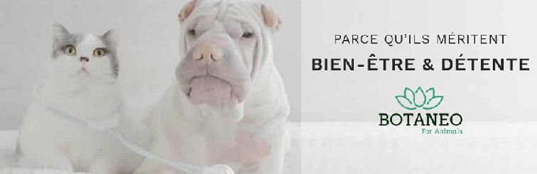 BOTANEO CBD pour chiens et chats